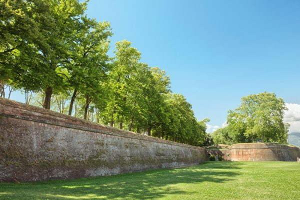 Lucca - the massive ancient wall, now a greenspace for pedestrians
