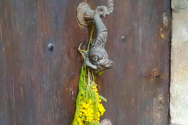 fish-shaped door handle with mimosa flowersi n Le Castellet